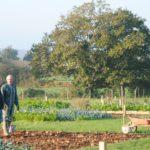 Breteil jardins du Fresne