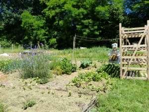 Locqueltas : jardins partagés en centre bourg