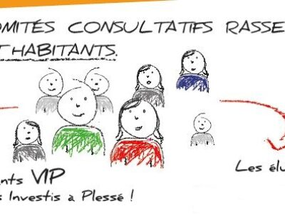 plessé_comites-consultatifs