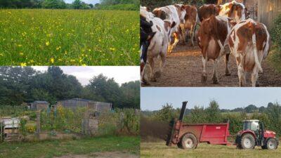 plesse_strategie-agricole