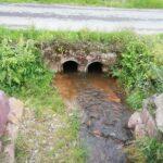 Concoret zone humide étang