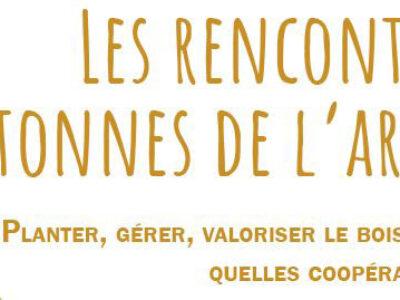 Rencontres bretonnes de l'arbre – 25 novembre à Paimpont (35)